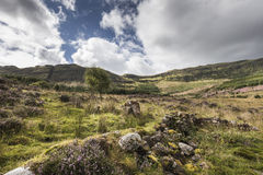 View over Aoineadh Mor Clearances in Ardnamurchan, Scotland. Royalty Free Stock Photo