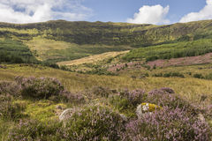 View over Aoineadh Mor Clearances in Ardnamurchan, Scotland. View over Aoineadh Mor Clearances at Ardnamurchan in the Highlands of Scotland Royalty Free Stock Image