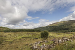 View over Aoineadh Mor Clearances in Ardnamurchan, Scotland. Stock Images