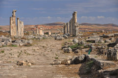 View over Apamea (Afamia). Apamea or Apameia was a treasure city and stud-depot of the Seleucid kings, was capital of Apamene, on the right bank of the Orontes Royalty Free Stock Photo