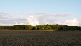 View over arable land. To the forest and clouds Stock Image
