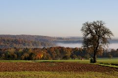 View over autumnal landscape. Autumn morning with fog in a valley, view over fields and forests Stock Photos