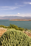 View over Barrage Bin El-Ouidane, high Atlas. Stock Photos