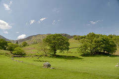 Free View Over Borrowdale Royalty Free Stock Images - 99086039