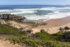 View over coast on the Garden Route, South Africa. View over coast on the Garden Route in South Africa royalty free stock image