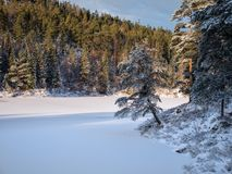 View over the cold snowy lake in evening light Royalty Free Stock Images