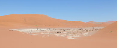 View over the deadvlei with the famous red dunes of Namib desert. Deadvlei (Sossusvlei), Namibia Stock Photo