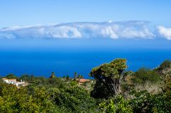 View over dragon trees and palms to the atlantic ocean in the northwest of La Palma. Spain Royalty Free Stock Photo