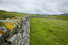 View over a drystone wall in northern scotland Stock Images