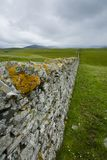 View over a drystone wall in northern scotland Stock Photography
