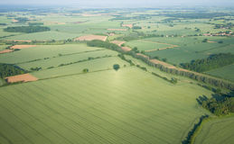 View over the early summer green fields Royalty Free Stock Photography