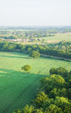 View over the early summer green fields Royalty Free Stock Image