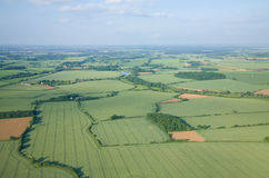 View over the early summer green fields Stock Image