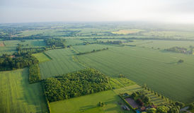 View over the early summer green fields Stock Images