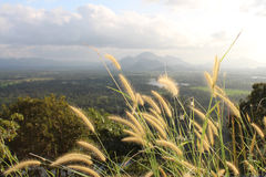 View over the fields and forest from the Lion Rock, Sigiriya. Stock Photo
