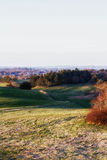 View over the fields. A picture from the top of Hjørring, Denmark Royalty Free Stock Photo