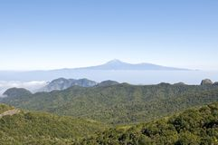 View over the Garajonay National Park on La Gomera Stock Photography