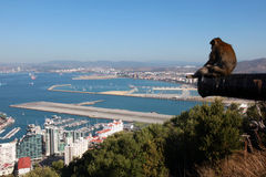 View over Gibraltar from the Rock. With a barbary macaques and the runway in the background royalty free stock photo