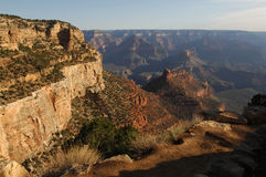 Grand Canyon. A view over the Grand Canyon stock image