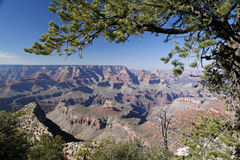 View over Grand Canyon National Park Stock Photos