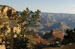 Grand Canyon. A view over the grand canyon with a sign and tree in the foreground royalty free stock images
