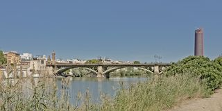 View over Guadalquivir river in the city of Seville. With Triana bridge and modern Seville office tower, view from the reed on the green embankment near the royalty free stock photography