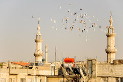 View over Hama, Syria. View over the roofs of Hama, Syria Stock Photo
