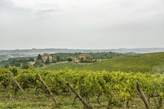 View over the hills with vineyards in beatiful Tuscany in Italy Stock Image