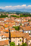 View over Italian town Lucca with typical terracotta roofs Stock Photos