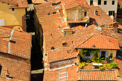 View over Italian town Lucca with typical terracotta roofs Royalty Free Stock Photo