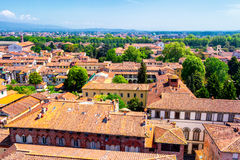 View over Italian town Lucca with typical terracotta roofs Royalty Free Stock Image