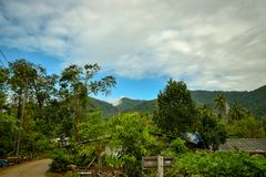 View over jungle landscape at thailand island. With cloudy weather Stock Photos