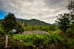 View over jungle landscape at thailand island. With cloudy weather Royalty Free Stock Photography