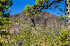 View over La Palma, Caldera de Taburiente, submit from near the viewpoint Cumbrecita. Canary islands, Spain stock images