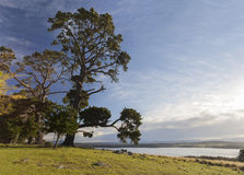 View over the lake Coila towards Tuross Head. Bingie. Australia. Stock Image