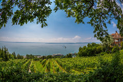 View over Lake Constance Royalty Free Stock Photos