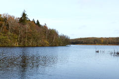 View over the lake Flyndersoe in Denmark. At fall Royalty Free Stock Image