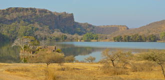 View over lake  at Ranthambore National Park. View over the lake towards the fort at Ranthambore National Park in the region of Rajasthan in Northern India Royalty Free Stock Image