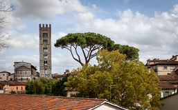 View over Lucca and Duomo San Martino in Tuscany, Italy. Lucca can be observed by biking around the old city on an old wall surrounding the city Royalty Free Stock Photos