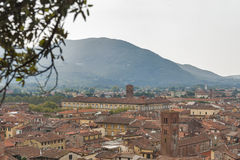 View over Lucca, Italy, from underneath trees on the Guinigi tow Royalty Free Stock Photography