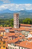 View over Lucca, Tuscany town Royalty Free Stock Photo