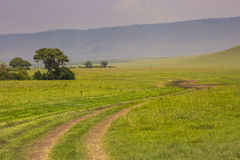 View over Ngorongoro Crater, Tanzania, East Africa (UNESCO World Royalty Free Stock Photography