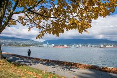 Scenic water landscape with fall foliage in autumn Vancouver Canada royalty free stock photography