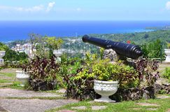 View over Ocho Rios port town from Shaw Park Botan Royalty Free Stock Photos