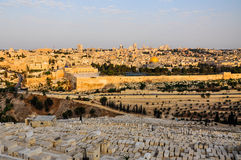 View over old city of Jerusalem, Israel. View over old city of Jerusalem and Mount of Olives at sunset, Israel/Palestine Stock Images