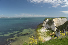 View over Old Harry Rocks, Swanage Royalty Free Stock Photo