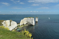 View over Old Harry Rocks, Swanage Royalty Free Stock Photography