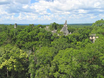 View over the old maya ruins. And the Peten jungle - Tikal - Guatemala Royalty Free Stock Images