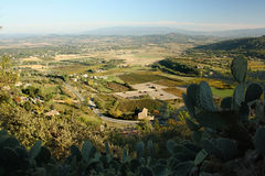 View over Provence. View from the village Gordes to landscape of the Provence, cactus in foreground Stock Images