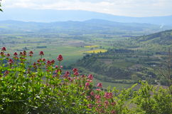 View over Provence Royalty Free Stock Image